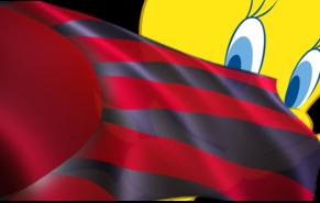 tweedy_behind_flag.jpg